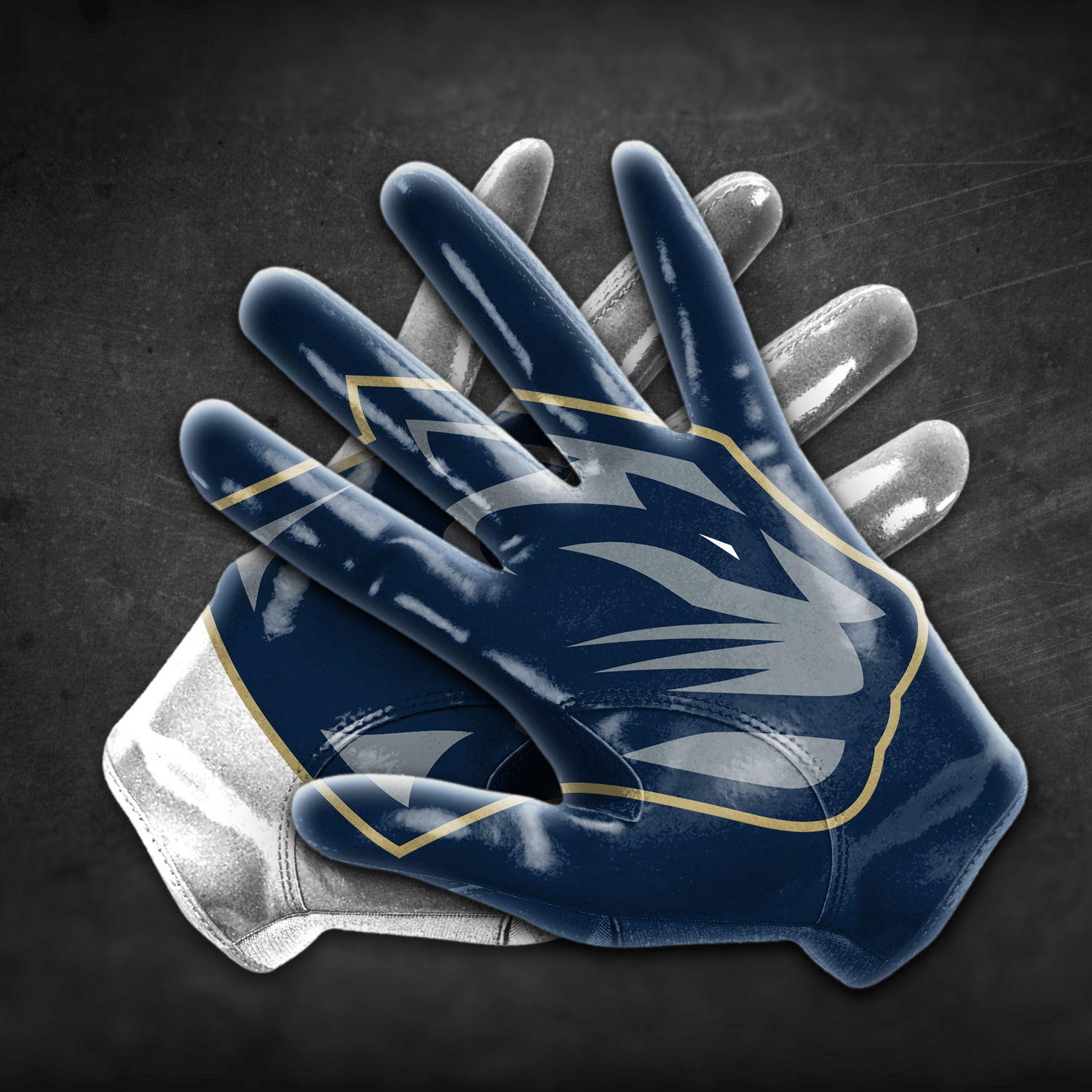 GBC_Flag Football Gloves_Panthers