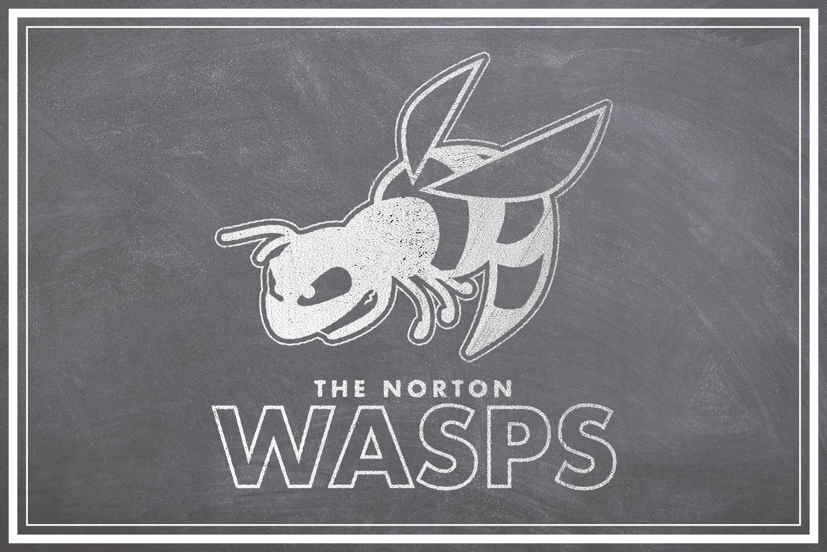 blackboard-wasps