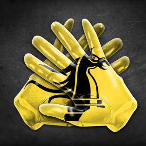 EBC_Flag Football Gloves_Knights