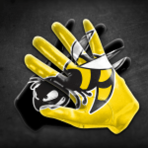 GBC_Flag Football Gloves_Wasps