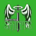 Downpatrick Saints AFC