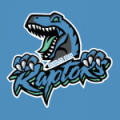 Dublin Bay Raptors AFC